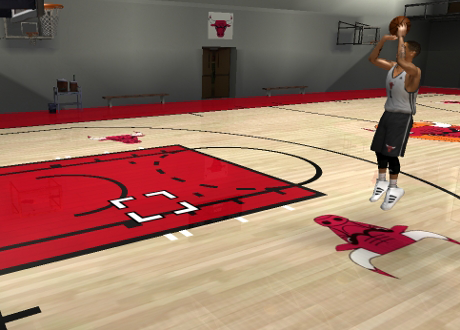 Chicago Bulls Practice Court for NBA Live 08