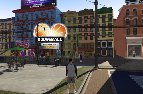 Dodgeball in The Neighborhood
